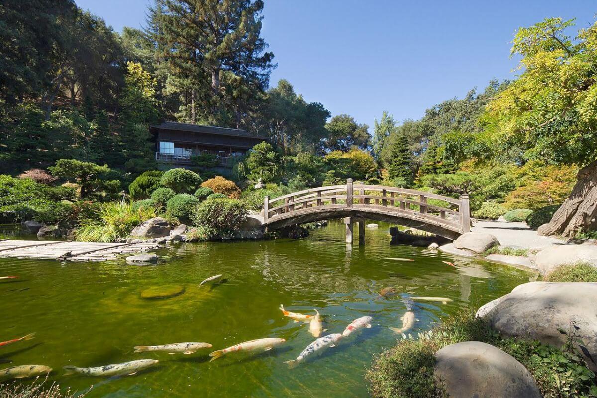 Hakone Estate and Gardens, Saratoga